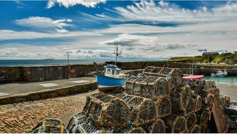 Isle of May from Crail Harbour